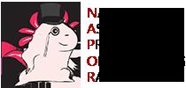 napor3
